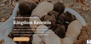 Kingdom Kennels Screenshot